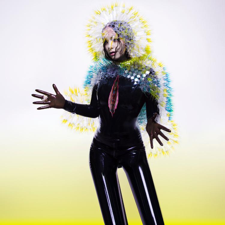 Björk опубликовала тизер «Black Lake»